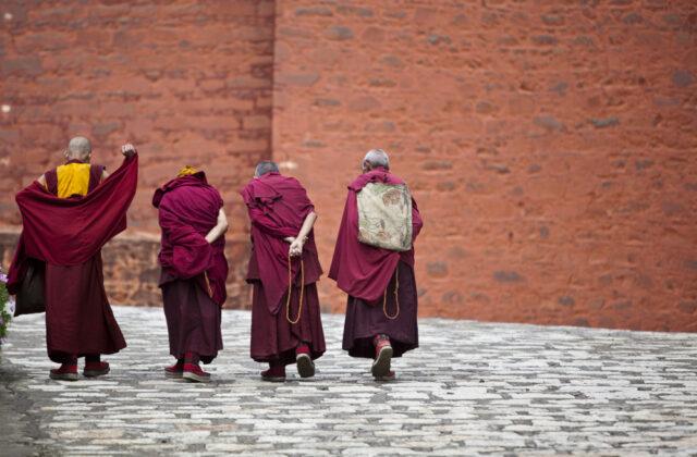 Przypowieść buddyjska
