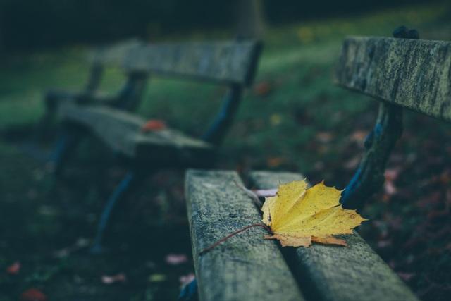 Depresja jesienna
